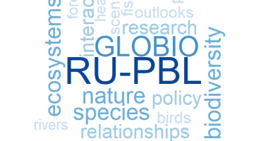 Wordcloud with keywords on the globio model