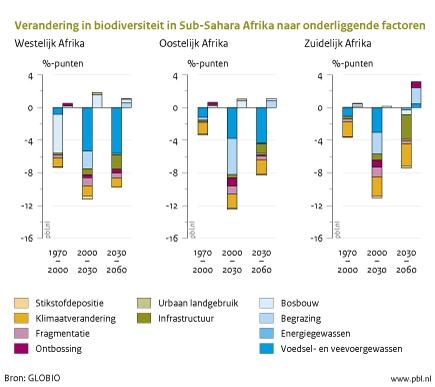 Figuur: grafiek over de verandering in biodiversiteit in Sub-Sahara Afrika; de toename van landbouwproductie zal leiden tot een afname van het bosareaal en tot een versnelde afname van biodiversiteit