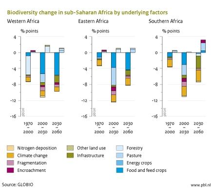 Figure: bar graphs that illustrate the biodiversity change in sub-Saharan Africa (PBL, 2012)