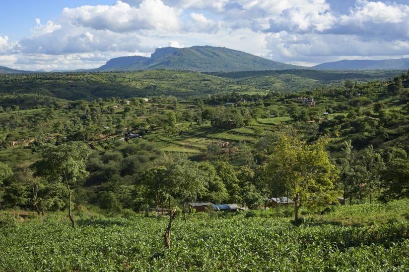 Photo Land restoration in Kenya