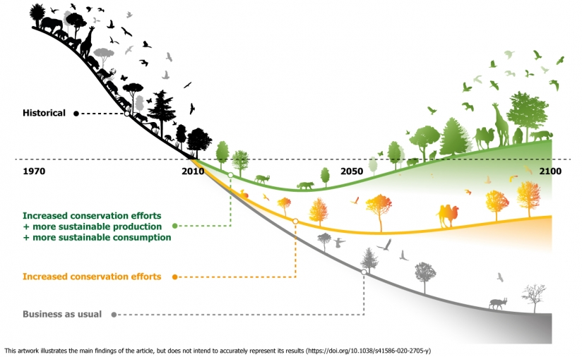 Infographic visualizing that terrestrial biodiversity is most effectively restored if area-based conservation is combined with a transformation of the food system
