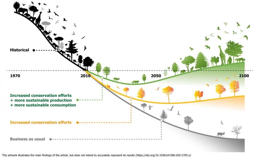 De wereldwijde afname van biodiversiteit kan worden gestopt met een geintegreerd pakket van maatregelen gericht op natuurbescherming enerzijds en transformatie van het voedselsysteem anderzijds.