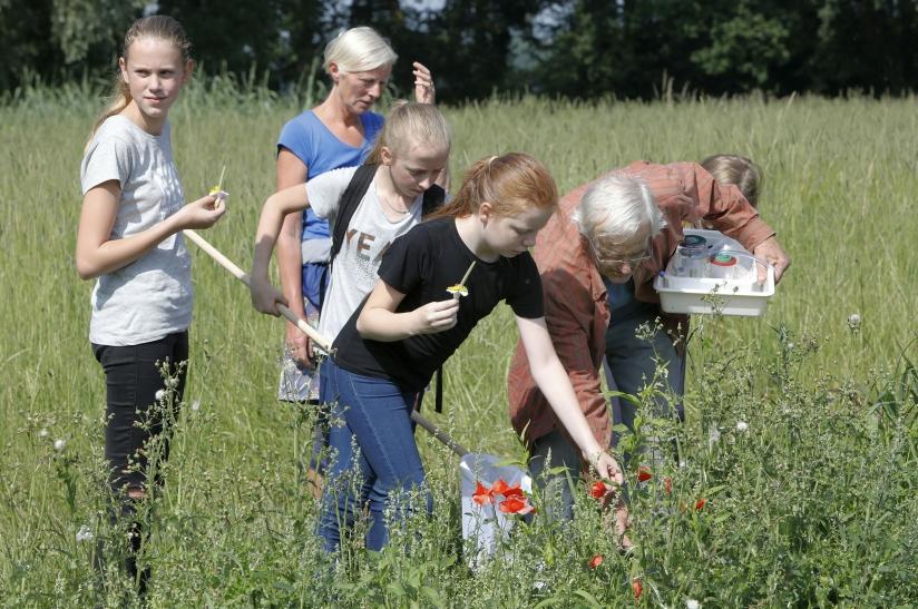 Grootouders en kleinkinderen onderzoeken de natuur