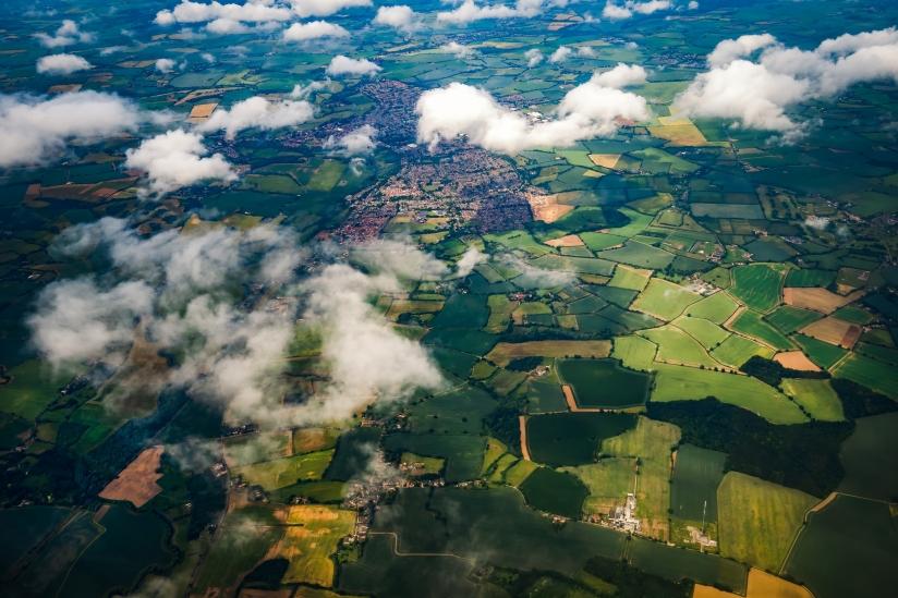 Photo of shared landscape