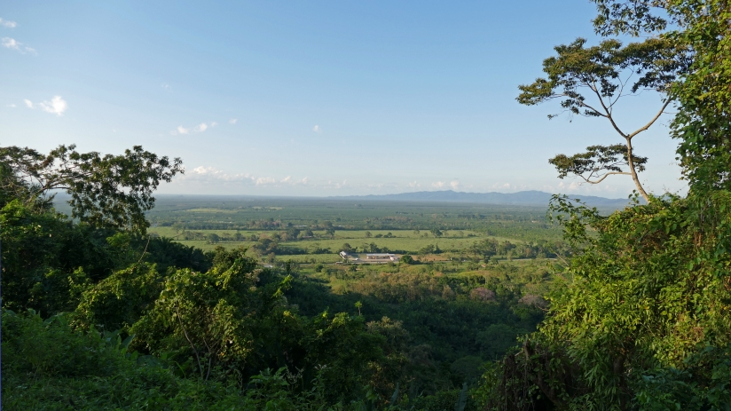 Managed landscapes integrate multiple values and objectives, Valle de Sula in Honduras